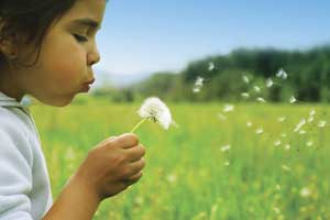 This is a stock photo of a child blowing on a dandelion.